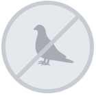 Bird Control Systems in Southend-On-Sea